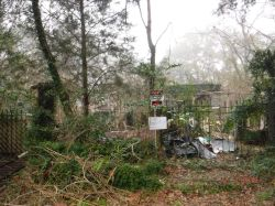 4212 ZACK LOGAN AVE.  Nuisance Property