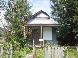 253 LOCUST ST. Nuisance Property